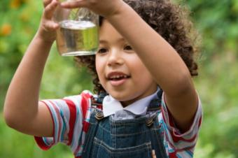 Water Purification for Emergencies