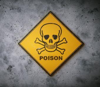 https://cf.ltkcdn.net/safety/images/slide/253264-850x744-5-important-lab-safety-symbols.jpg