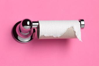 Top Toilet Paper Alternatives and Making Emergency TP