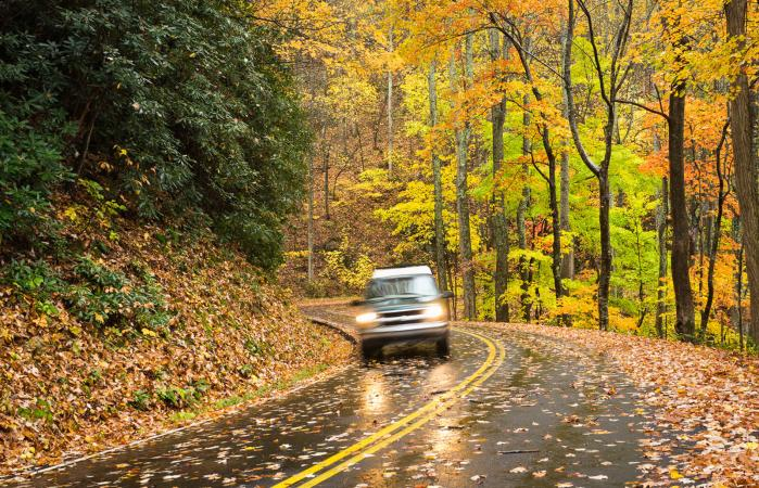 Car driving down wet road covered in fall leaves
