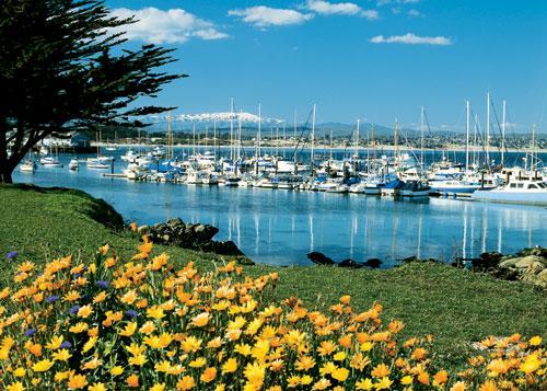 https://cf.ltkcdn.net/sanfrancisco/images/slide/10212-500x357-harborflowers.jpg