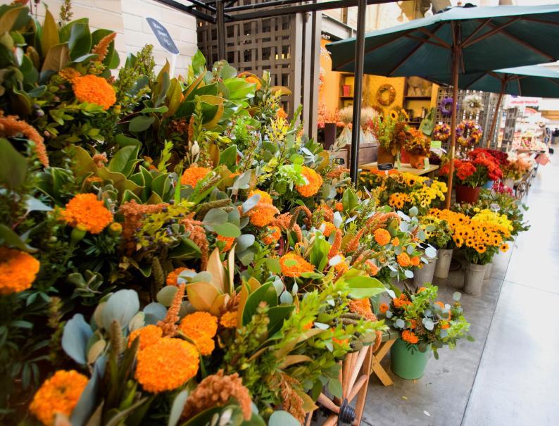 https://cf.ltkcdn.net/sanfrancisco/images/slide/10245-794x605-ferry-flowers.jpg