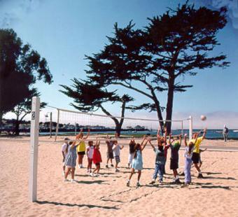 https://cf.ltkcdn.net/sanfrancisco/images/slide/10216-500x456-volleyballplayers.jpg