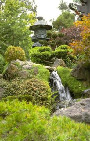 Discover fun attractions in Golden Gate Park.