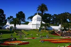 The Conservatory is a favorite San Francisco attraction.