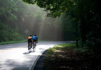 Cyclists riding through Golden Gate Park