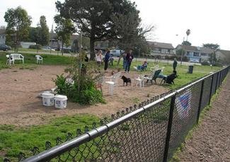 Alameda Small Dog Park