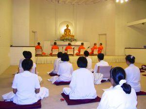 Buddhist Teacher