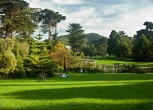 Golden Gate Park is a main attraction in San Francisco.