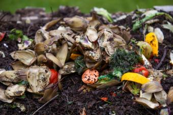 https://cf.ltkcdn.net/save/images/slide/167742-600x399-compost-repurpose-waste.jpg