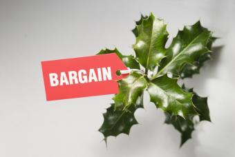 https://cf.ltkcdn.net/save/images/slide/167764-847x567-seasonal-bargain.jpg