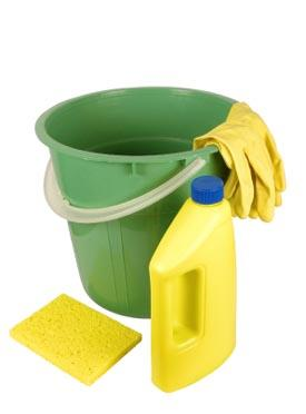 Bucket, sponge, rubber gloves and cleaning product