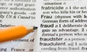 Welfare Fraud Statistics