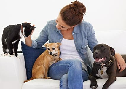 Woman with multiple pets