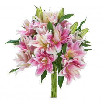 Pink and white rose lily bouquet