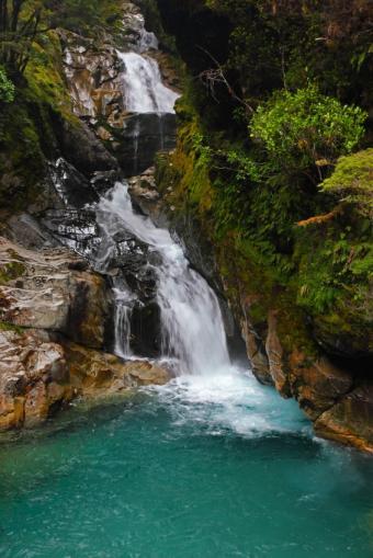 https://cf.ltkcdn.net/science/images/slide/209648-566x848-rainforestwaterfall.jpg