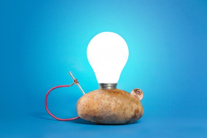 potato electricity Using fruits and vegetables to produce electricity  the clock starts to go and will go for a go few weeks until the potato shrivels up the clock will work with.
