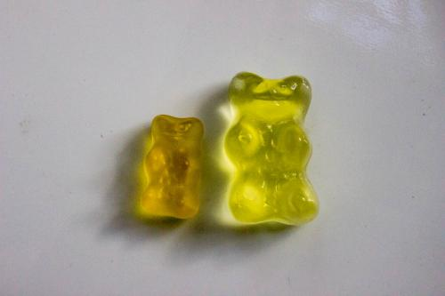gummy bear comparison