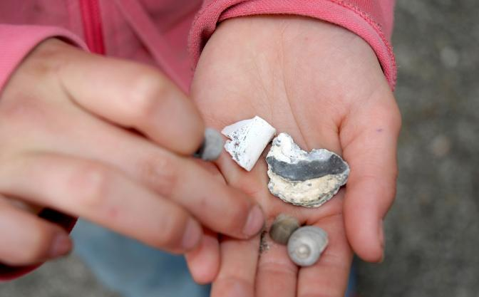 girl with rock collection