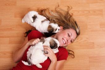 https://cf.ltkcdn.net/scrapbooking/images/slide/143909-849x565r1-woman-with-puppies.jpg