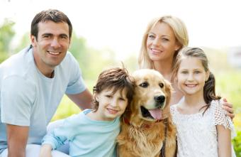 https://cf.ltkcdn.net/scrapbooking/images/slide/143912-850x553r1-dog-with-family.jpg