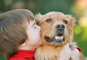 https://cf.ltkcdn.net/scrapbooking/images/slide/143914-837x573r1-boy-and-dog.jpg