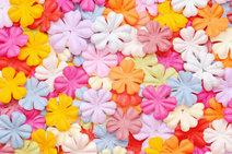 Giant Paper Punch Flowers