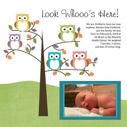 owl baby scrapbook layout