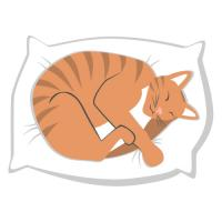 Sleeping Cat Clipart 2