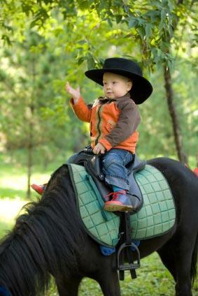 Little boy on horse.