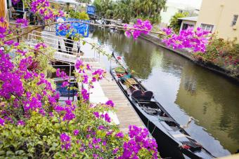 High angle view of a boat moored at canal, Fort Lauderdale, Florida, USA
