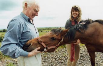 Senior man in equine therapy