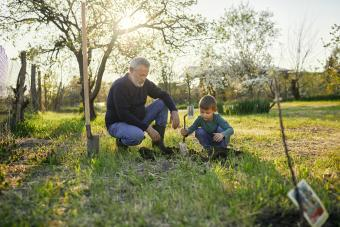 Grandfather looking at grandson planting tree