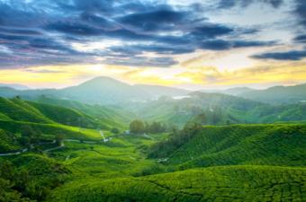 https://cf.ltkcdn.net/seniors/images/slide/91139-800x530-retire-malaysia.jpg