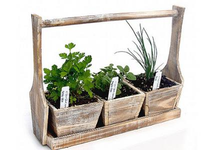 Wooden Herb Tray Set at The Tasteful Garden