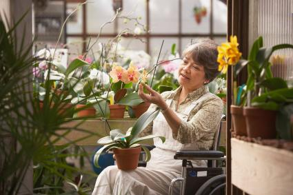 Woman in wheelchair tending flowers