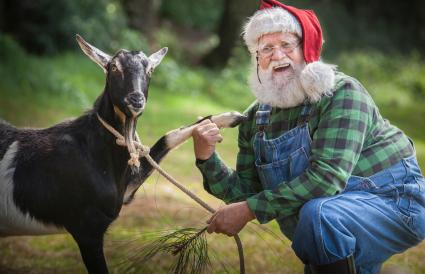 Santa Claus dress with farmer