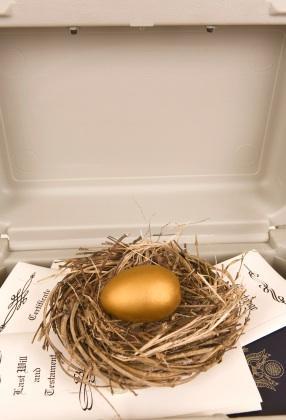 Nest_Egg.jpg