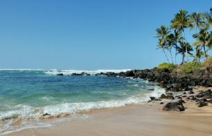 Turtle Beach, Hawaii