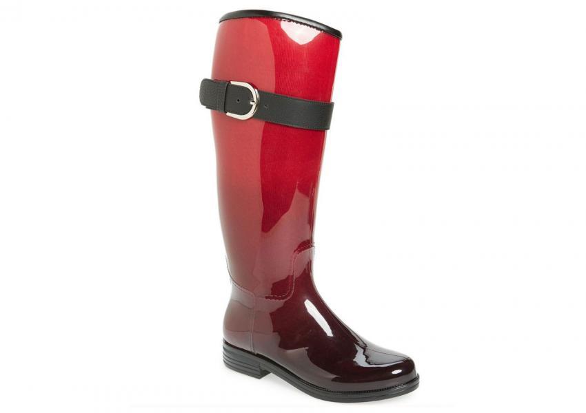https://cf.ltkcdn.net/shoes/images/slide/209902-850x600-dav_Bristol_Weatherproof_Knee_High_RainBoot.jpg