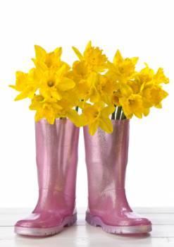 Women's Colorful Rain Boots