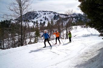 Rim Nordic x-country skiing