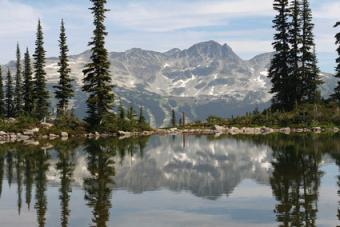 Whistler Ski Resort in Canada