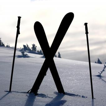 https://cf.ltkcdn.net/ski/images/slide/234821-850x850--skier-silhouette-images.jpg