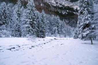 Attitash Bear Peak Ski Area