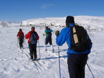 Michigan Cross Country Skiing