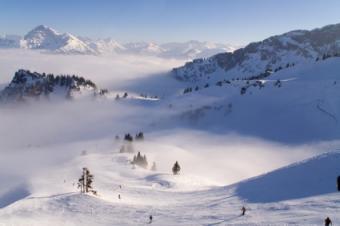 Ski Cams