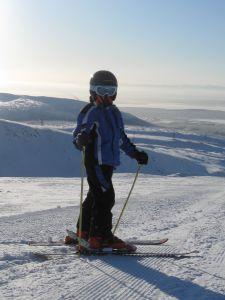 Lightest Ski Poles