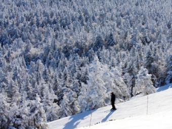 Skiing in Taos is a breathtaking experience