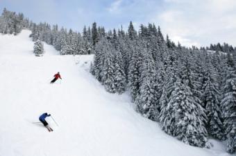 Wisp Ski Area